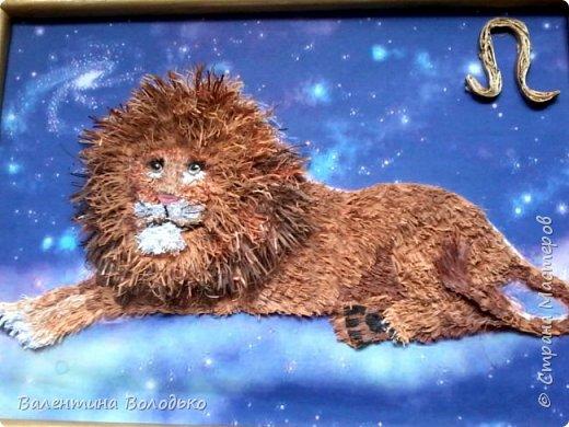 Здравствуйте дорогие мастера и мастерицы!!!Сегодня у меня лев.Сестра моего зятя попросила сделать панно со львом.Она по знаку зодиака -лев.Фон -распечатка зведного неба.На этом фото сделала более светлым,следуещее темный,а какой лучше не могу выбрать. фото 5
