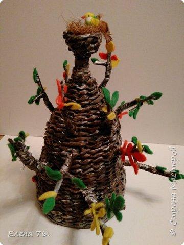 Чудо-дерево! фото 2