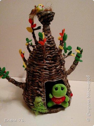 Чудо-дерево! фото 5
