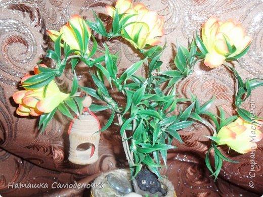 Все привет кто заглянул,давно хотела я как нибудь использовать свое огромное количество палочек для суши,вот и получился такой красивый боченок,так пустой же он не может стоять ,посадила в него деревце с скворечником,а под деревом спит киска))) фото 1