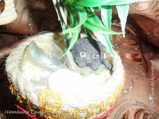 Все привет кто заглянул,давно хотела я как нибудь использовать свое огромное количество палочек для суши,вот и получился такой красивый боченок,так пустой же он не может стоять ,посадила в него деревце с скворечником,а под деревом спит киска))) фото 5