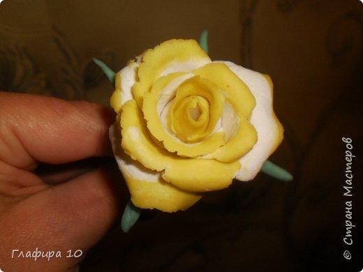 Очень люблю лилии фото 3