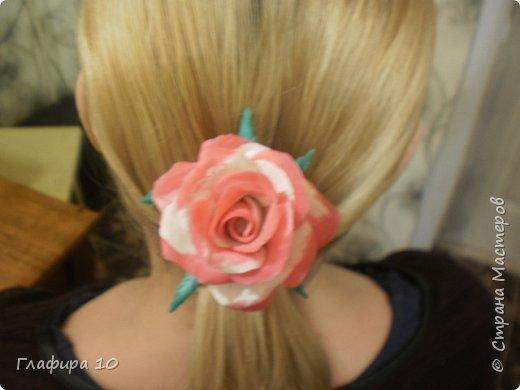 Очень люблю лилии фото 4