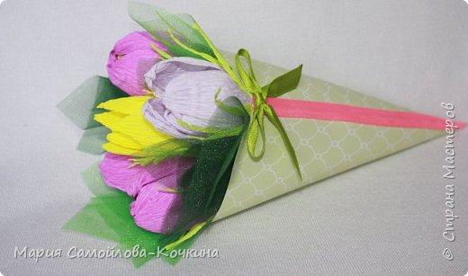 тюльпаны и крокусы фото 2
