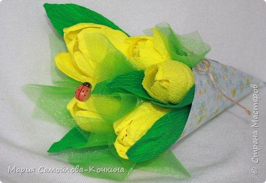 тюльпаны и крокусы фото 3