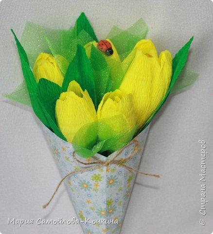 тюльпаны и крокусы фото 4