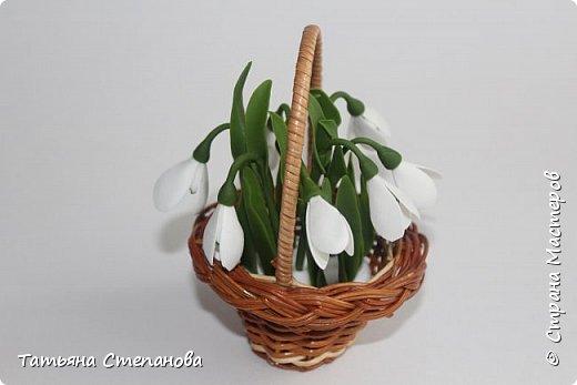 Здравствуйте дорогие мастера!!!!! Вот и весенний праздник не за горами. Я уже подготовилась и сделала своим близким подарки. Всех с наступающим праздником весны 8 марта!!!! Счастья , удачи, успехов и творческого настроения!!!! фото 8