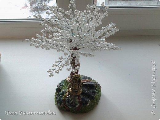 Добрые сутки дорогие мастерицы и мастера.Сделала небольшое подарочное дерево,, Сакура,, фото 1