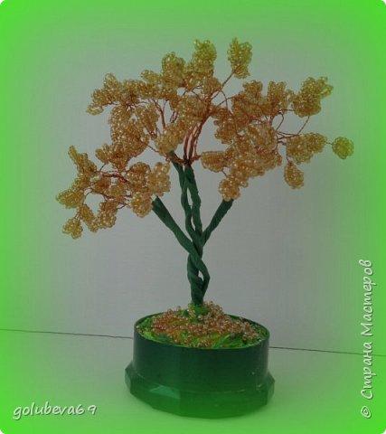 Бисерное деревце. фото 2