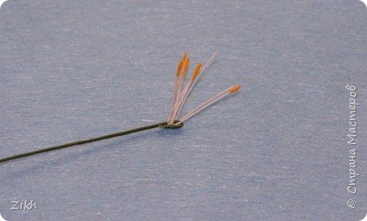 Здравствуйте, дорогие жители Страны Мастеров! Сегодня я покажу как легко и быстро можно сотворить брошь из фетра в виде цветка нарцисса. фото 11