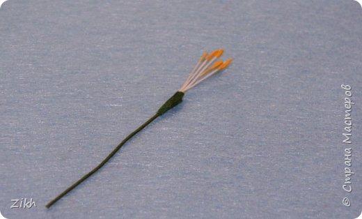 Здравствуйте, дорогие жители Страны Мастеров! Сегодня я покажу как легко и быстро можно сотворить брошь из фетра в виде цветка нарцисса. фото 12