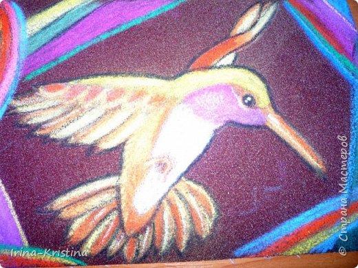 Опять любимые колибри! Рисовала,смотря на картинку (фото). фото 1