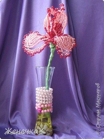 Моя бисеромания и орхидеяманиЯ! фото 2
