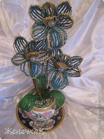 Моя бисеромания и орхидеяманиЯ! фото 13