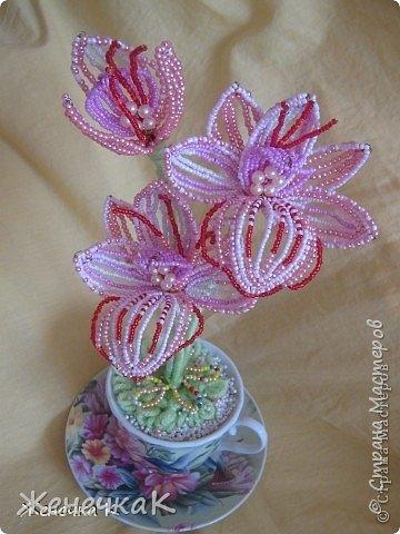 Моя бисеромания и орхидеяманиЯ! фото 14