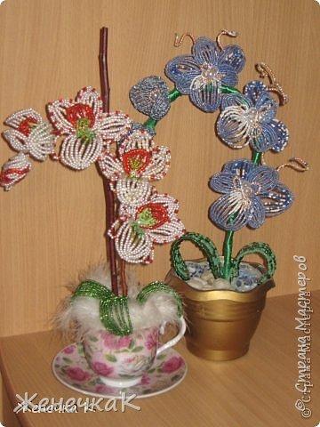 Моя бисеромания и орхидеяманиЯ! фото 18