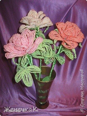 Моя бисеромания и орхидеяманиЯ! фото 4