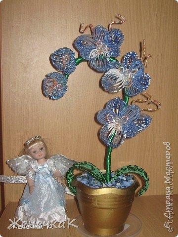 Моя бисеромания и орхидеяманиЯ! фото 5