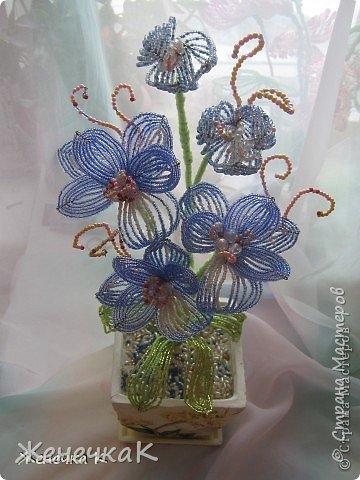 Моя бисеромания и орхидеяманиЯ! фото 9