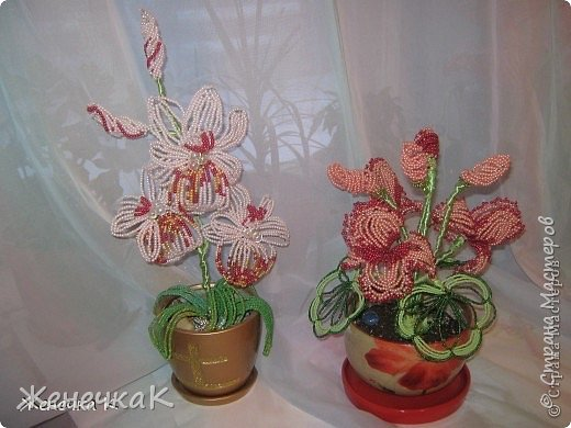 Моя бисеромания и орхидеяманиЯ! фото 11
