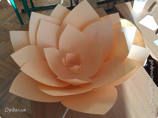 Нашла на просторах интернета замечательную идею по украшательству свадебных залов, и подумала - почему бы и ДА?  Итак, в преддверии весны и 8 марта украшаем класс бумажными цветочками. фото 10