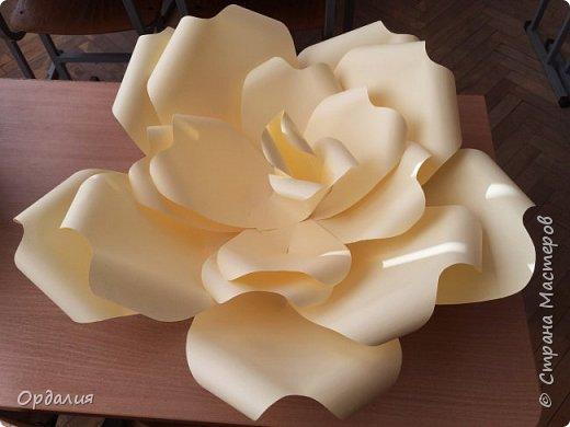 Нашла на просторах интернета замечательную идею по украшательству свадебных залов, и подумала - почему бы и ДА?  Итак, в преддверии весны и 8 марта украшаем класс бумажными цветочками. фото 3
