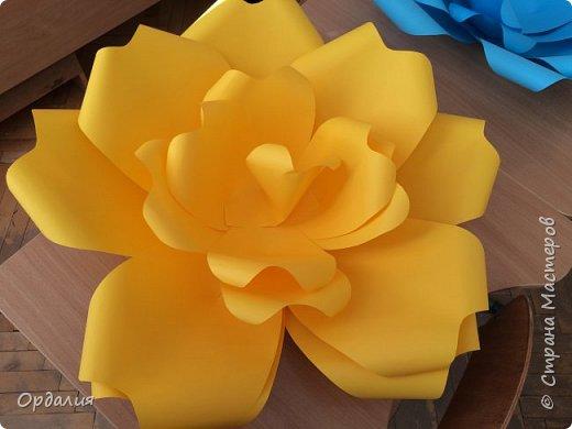 Нашла на просторах интернета замечательную идею по украшательству свадебных залов, и подумала - почему бы и ДА?  Итак, в преддверии весны и 8 марта украшаем класс бумажными цветочками. фото 8