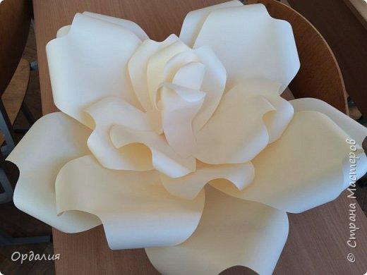 Нашла на просторах интернета замечательную идею по украшательству свадебных залов, и подумала - почему бы и ДА?  Итак, в преддверии весны и 8 марта украшаем класс бумажными цветочками. фото 7