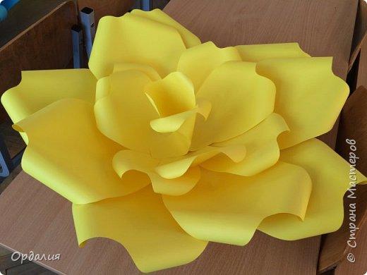 Нашла на просторах интернета замечательную идею по украшательству свадебных залов, и подумала - почему бы и ДА?  Итак, в преддверии весны и 8 марта украшаем класс бумажными цветочками. фото 5