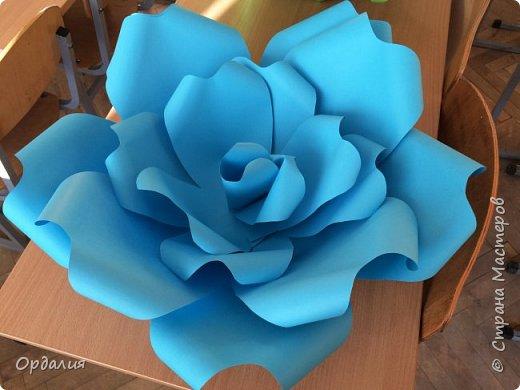 Нашла на просторах интернета замечательную идею по украшательству свадебных залов, и подумала - почему бы и ДА?  Итак, в преддверии весны и 8 марта украшаем класс бумажными цветочками. фото 6