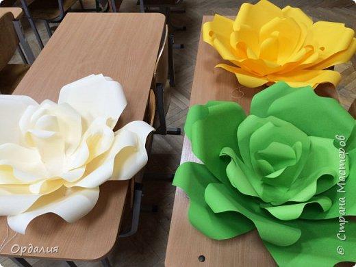 Нашла на просторах интернета замечательную идею по украшательству свадебных залов, и подумала - почему бы и ДА?  Итак, в преддверии весны и 8 марта украшаем класс бумажными цветочками. фото 13
