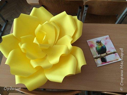 Нашла на просторах интернета замечательную идею по украшательству свадебных залов, и подумала - почему бы и ДА?  Итак, в преддверии весны и 8 марта украшаем класс бумажными цветочками. фото 11