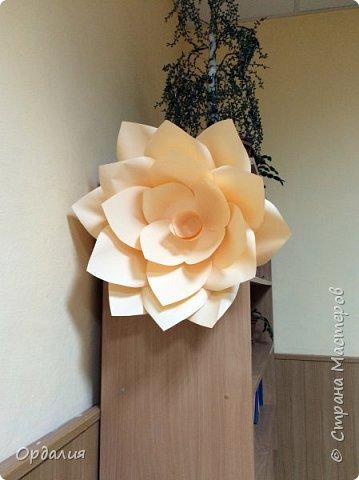 Нашла на просторах интернета замечательную идею по украшательству свадебных залов, и подумала - почему бы и ДА?  Итак, в преддверии весны и 8 марта украшаем класс бумажными цветочками. фото 18