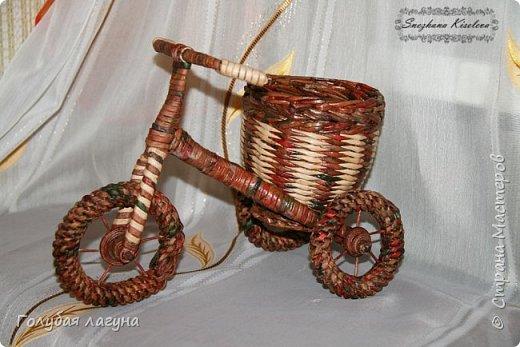 Самый первый велосипед. фото 2