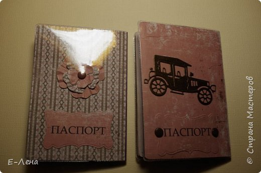 Обложки на паспорт лицевые стороны. фото 2