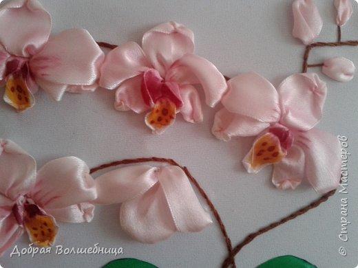 Здравствуйте, дорогие Рукодельницы! Первый раз вышиваю орхидею. После черной орхидеи из фоамирана, мне легко представлялось строение цветка. Фом тонировать легко, а вот ленты, да еще и по вышитому. Это я не очень люблю. Пришлось тонировать 2 раза. Первый раз краска потекла на фон. Постирала! А что делать?! Второй раз подкладывала со всех сторон салфетку. Этот способ мне понравился. Лишняя жидкость сразу впитывалась  фото 2