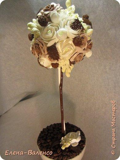 Вот такой ванильно-шоколадный топиарий слепился долгими зимними вечерами. фото 1