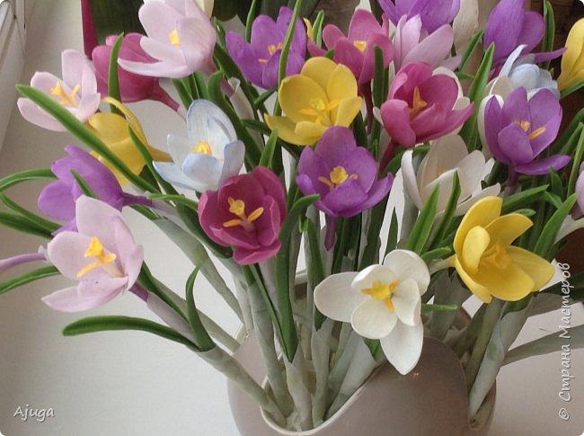 Крокусы к первому дню весны!!Холодный фарфор. Ручная работа. фото 2