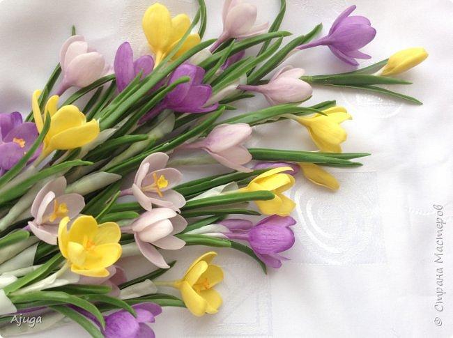 Крокусы к первому дню весны!!Холодный фарфор. Ручная работа. фото 7