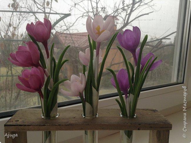Крокусы к первому дню весны!!Холодный фарфор. Ручная работа. фото 10