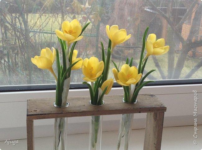 Крокусы к первому дню весны!!Холодный фарфор. Ручная работа. фото 11