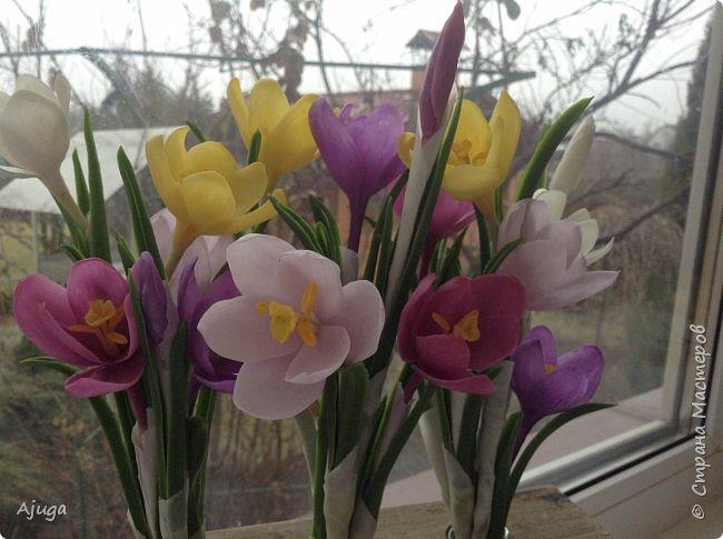 Крокусы к первому дню весны!!Холодный фарфор. Ручная работа. фото 14