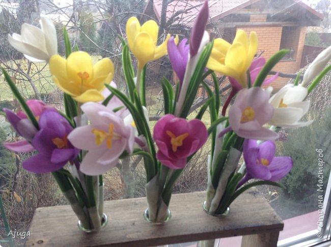 Крокусы к первому дню весны!!Холодный фарфор. Ручная работа. фото 15