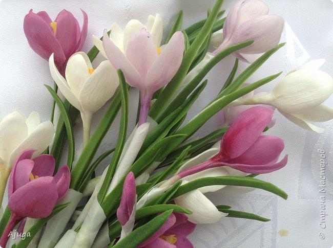 Крокусы к первому дню весны!!Холодный фарфор. Ручная работа. фото 17