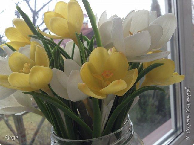 Крокусы к первому дню весны!!Холодный фарфор. Ручная работа. фото 19