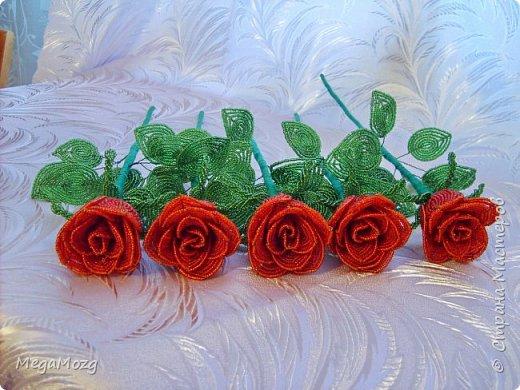 Добрый вечер! У меня заказали букет бокаловидных роз, которые я ещё никогда в жизни не плела =)) Было ужасно сложно найти МК по ним, потому что бокаловидные розы мало плетут, в основном раскрывшиеся, пышные. Но клиентка упёрлась и ей захотелось именно такие. Что ж, ладно. Нашла два МК и она выбрала именно вот этот http://stranamasterov.ru/node/477210 Девушки по имени Виктория Ко-вю. Спасибо ей большое за него, спасибо! И просто, и понятно и красиво! Только листочки я выбрала из другого МК. И в результате у меня получилась вот такая красота! Прошу любить и жаловать мой первый букет бокаловидных роз! Так же есть ещё две такие розочки: одна самая первая останется у меня, а вторая отправиться к отцу на работу. Розочки уже забрали. Клиентка была очень довольна! Чему я бесконечно рада! Теперь и я умею плести такие розочки! Цветы прекрасны в любом виде! Шедевр природы не повторить! Спасибо! фото 9