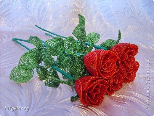 Добрый вечер! У меня заказали букет бокаловидных роз, которые я ещё никогда в жизни не плела =)) Было ужасно сложно найти МК по ним, потому что бокаловидные розы мало плетут, в основном раскрывшиеся, пышные. Но клиентка упёрлась и ей захотелось именно такие. Что ж, ладно. Нашла два МК и она выбрала именно вот этот http://stranamasterov.ru/node/477210 Девушки по имени Виктория Ко-вю. Спасибо ей большое за него, спасибо! И просто, и понятно и красиво! Только листочки я выбрала из другого МК. И в результате у меня получилась вот такая красота! Прошу любить и жаловать мой первый букет бокаловидных роз! Так же есть ещё две такие розочки: одна самая первая останется у меня, а вторая отправиться к отцу на работу. Розочки уже забрали. Клиентка была очень довольна! Чему я бесконечно рада! Теперь и я умею плести такие розочки! Цветы прекрасны в любом виде! Шедевр природы не повторить! Спасибо! фото 12