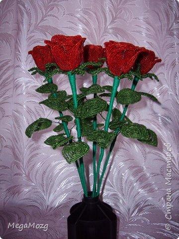 Добрый вечер! У меня заказали букет бокаловидных роз, которые я ещё никогда в жизни не плела =)) Было ужасно сложно найти МК по ним, потому что бокаловидные розы мало плетут, в основном раскрывшиеся, пышные. Но клиентка упёрлась и ей захотелось именно такие. Что ж, ладно. Нашла два МК и она выбрала именно вот этот http://stranamasterov.ru/node/477210 Девушки по имени Виктория Ко-вю. Спасибо ей большое за него, спасибо! И просто, и понятно и красиво! Только листочки я выбрала из другого МК. И в результате у меня получилась вот такая красота! Прошу любить и жаловать мой первый букет бокаловидных роз! Так же есть ещё две такие розочки: одна самая первая останется у меня, а вторая отправиться к отцу на работу. Розочки уже забрали. Клиентка была очень довольна! Чему я бесконечно рада! Теперь и я умею плести такие розочки! Цветы прекрасны в любом виде! Шедевр природы не повторить! Спасибо! фото 2