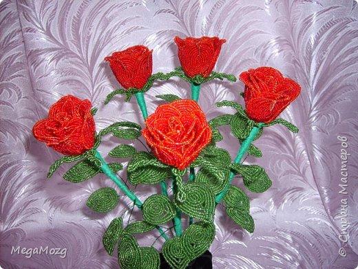 Добрый вечер! У меня заказали букет бокаловидных роз, которые я ещё никогда в жизни не плела =)) Было ужасно сложно найти МК по ним, потому что бокаловидные розы мало плетут, в основном раскрывшиеся, пышные. Но клиентка упёрлась и ей захотелось именно такие. Что ж, ладно. Нашла два МК и она выбрала именно вот этот http://stranamasterov.ru/node/477210 Девушки по имени Виктория Ко-вю. Спасибо ей большое за него, спасибо! И просто, и понятно и красиво! Только листочки я выбрала из другого МК. И в результате у меня получилась вот такая красота! Прошу любить и жаловать мой первый букет бокаловидных роз! Так же есть ещё две такие розочки: одна самая первая останется у меня, а вторая отправиться к отцу на работу. Розочки уже забрали. Клиентка была очень довольна! Чему я бесконечно рада! Теперь и я умею плести такие розочки! Цветы прекрасны в любом виде! Шедевр природы не повторить! Спасибо! фото 7