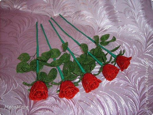Добрый вечер! У меня заказали букет бокаловидных роз, которые я ещё никогда в жизни не плела =)) Было ужасно сложно найти МК по ним, потому что бокаловидные розы мало плетут, в основном раскрывшиеся, пышные. Но клиентка упёрлась и ей захотелось именно такие. Что ж, ладно. Нашла два МК и она выбрала именно вот этот http://stranamasterov.ru/node/477210 Девушки по имени Виктория Ко-вю. Спасибо ей большое за него, спасибо! И просто, и понятно и красиво! Только листочки я выбрала из другого МК. И в результате у меня получилась вот такая красота! Прошу любить и жаловать мой первый букет бокаловидных роз! Так же есть ещё две такие розочки: одна самая первая останется у меня, а вторая отправиться к отцу на работу. Розочки уже забрали. Клиентка была очень довольна! Чему я бесконечно рада! Теперь и я умею плести такие розочки! Цветы прекрасны в любом виде! Шедевр природы не повторить! Спасибо! фото 8